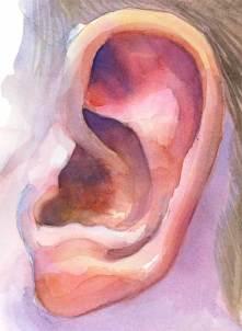 ear2.jpg