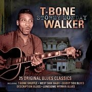 t-bone_walker_album_cover.jpg